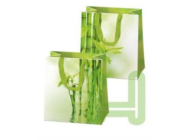 Geschenksack Hartung Bambus 32x26x14cm