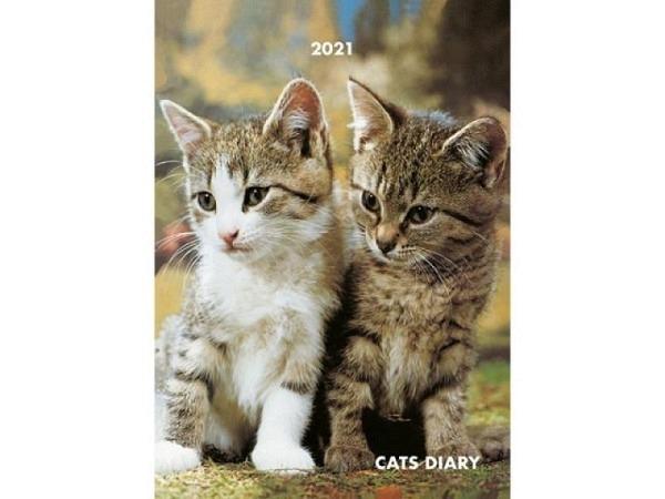 Agenda Alfa Kartos Cats Diary Katzen 15x21cm mit Spirale