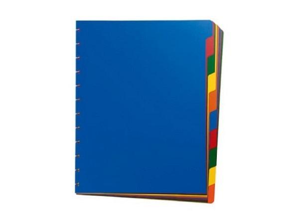 Register Adoc A4 10tlg. für Zeigbuch extrastarker Kunststoff