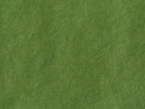 Seidenpapier Werola SeaSilk moosgrün, 24 Bogen 50x75cm