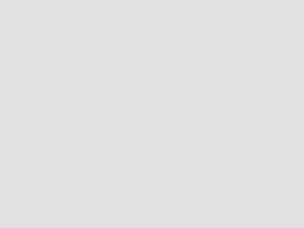 Papier Steinbeis Recycling Evolution White 80g/qm A3 500Blatt