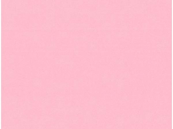Papier Image Coloraction A3 120g/qm Coral/rosa 250 Blatt