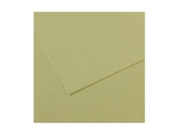 Mi-Teintes 50x65cm 160g/qm Hellgrün säurefrei 480