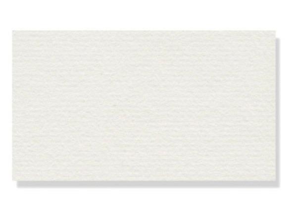 Ingres Hahnemühle 100g/qm 48x62,5cm weiss