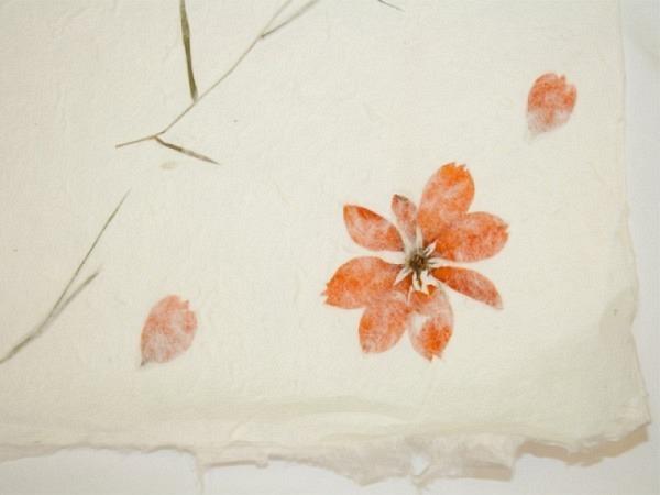 Japanpapier Oppek Blütenpapier weiss 65x95 Blume orange 60g