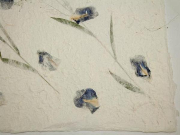 Japanpapier Oppek Blütenpapier weiss 65x95cm Iris blau 60gr