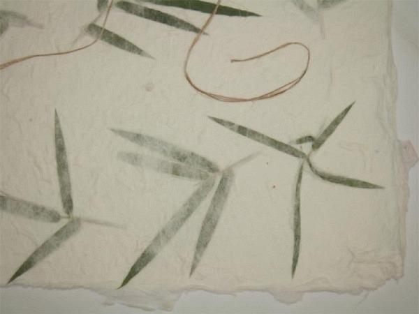 Japanpapier Oppek Blütenpapier weiss 65x95cm Bambus grün 60g