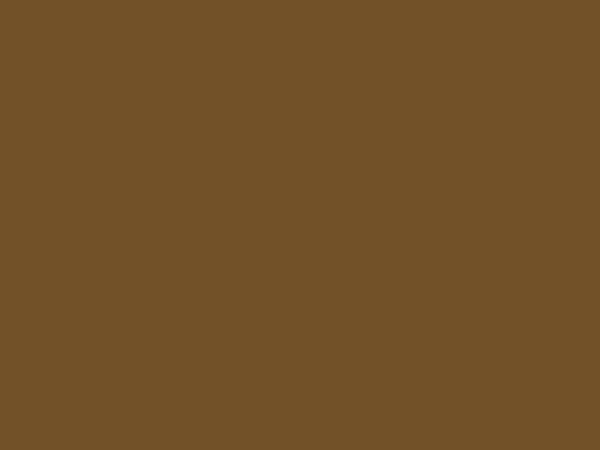 Karton Kraftpapier braun 50x70cm 283g/qm