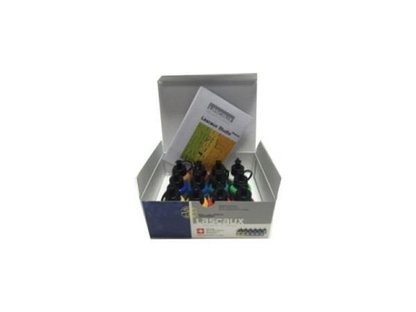 Akryl Lascaux Studio Set Karton 12Flaschen 30ml 3910