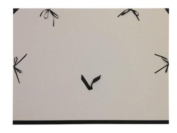 Zeichenmappe aus Graukarton 85x120cm A0 (84x120cm)