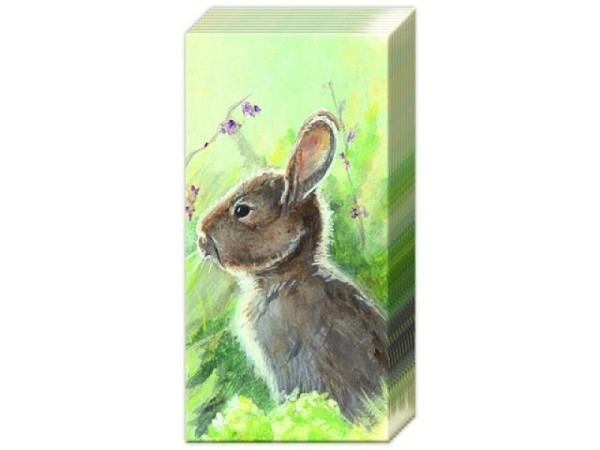 Taschentuch Ihr Rabbit in the Meadow, Hase im Gras