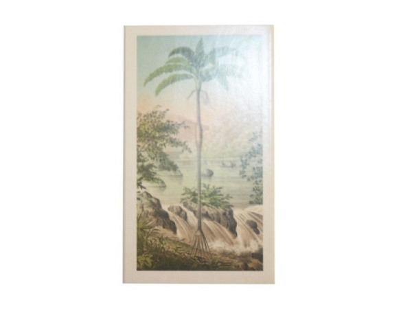 Streichholzschachtel Sköna Ting palm 6x11 cm