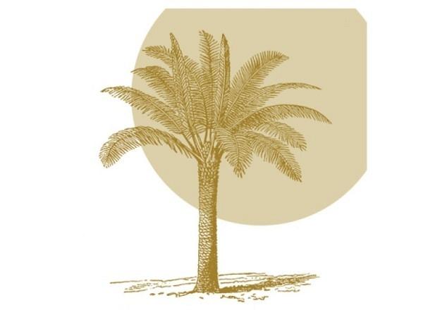 Servietten Braun Company Lunch Tropical Palm 33x33cm weiss