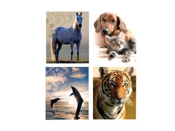 Briefpapier Tiere bunt 4 Motive Briefbogen 150x209mm
