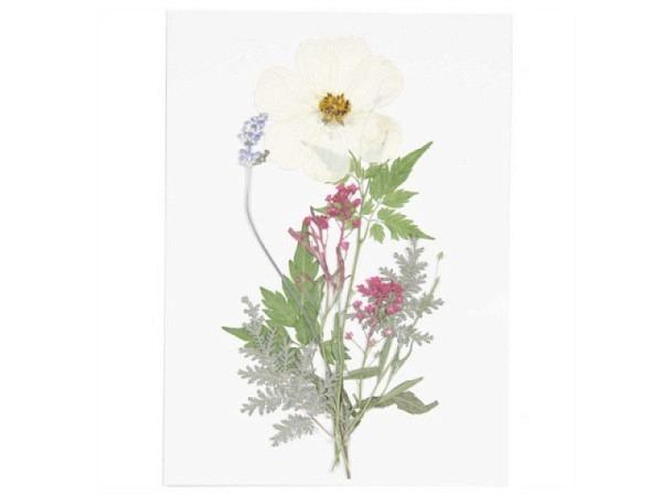 Streudeko Rico Design Gepresste Blüten, Mix Set weiss violett 7Stk.
