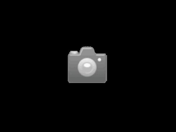 Geburtstagskarte Creative Lab Amsterdam Jungle 12x17,5cm, weisse Doppelkarte, bedruckt mit Palmen, gold Folienprägung