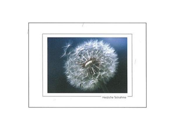 Trauerkarte Art Bula 13x18cm Pusteblume, dunkelfarbig