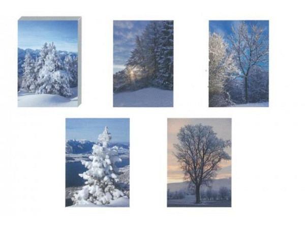 Kartenbox Art Bula 5er Set 12,2x17,5cm Winterlandschaft