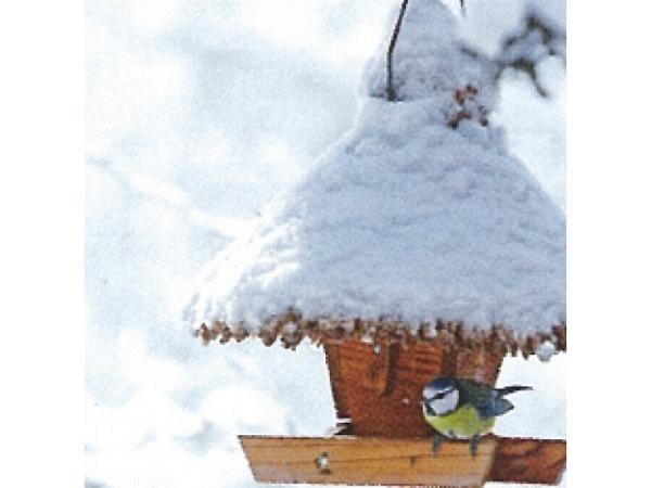 Kartenbox Art Bula 5er Set, Verschneites Holzhäuschen