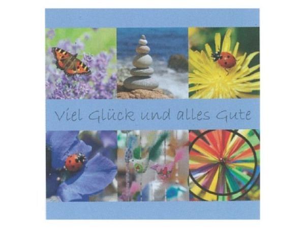 Abschiedskarte Art Bula 21,2x21,2cm Marienkäfer und Blumen