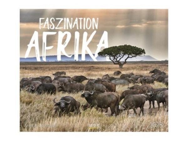 Kalender Faszination Afrika 55x46cm