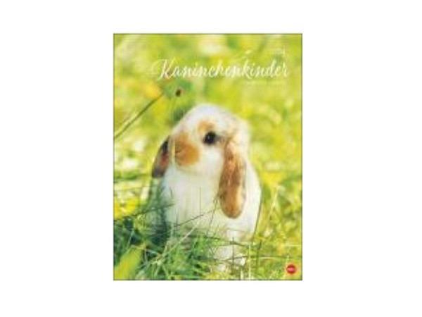Kalender Kaninchenkinder 44x34cm