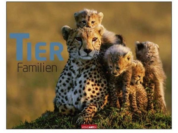 Kalender Tierfamilien 44x34cm