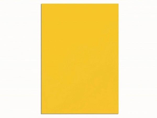 Magnet Maul Magnetplatte A4 gelb
