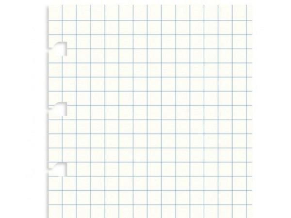 Ringbucheinlage Notizpapier Filofax A4 kariert, 32 Blatt