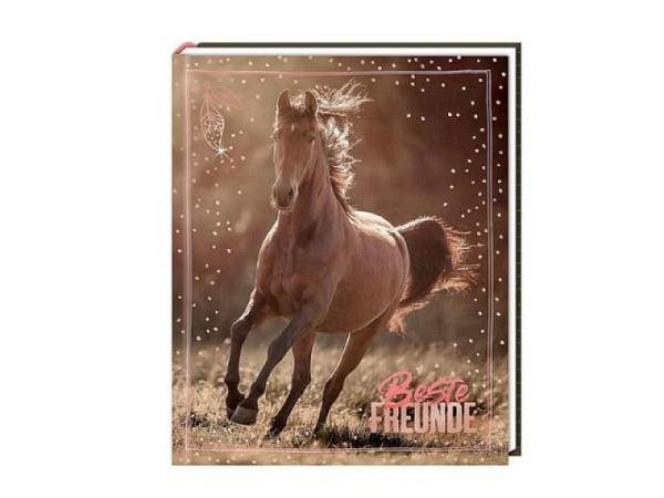 Freundschaftsbuch Coppenrath Pferdefreunde