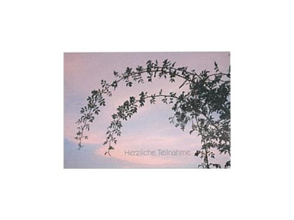 Trauerkarte Art Bula 12,2x17,5cm Äste vor rosafarbenem Himmel, Doppelkarte mit Fotodruck, unbedrucktem Einlageblatt und Couvert