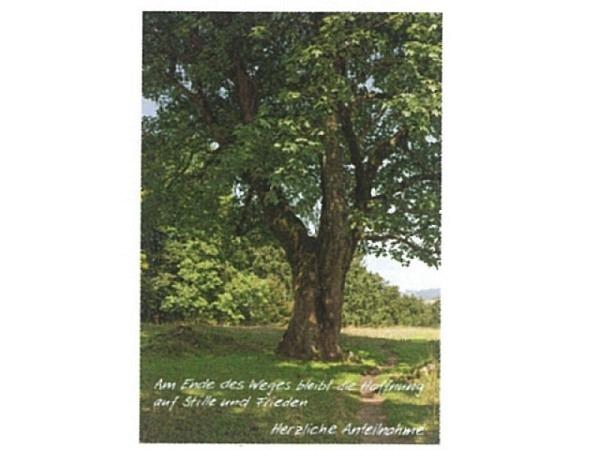 Trauerkarte Art Bula 12,2x17,5cm eine zarte Blüte, mit Text, Doppelkarte mit Fotodruck, unbedrucktem Einlageblatt und Couvert