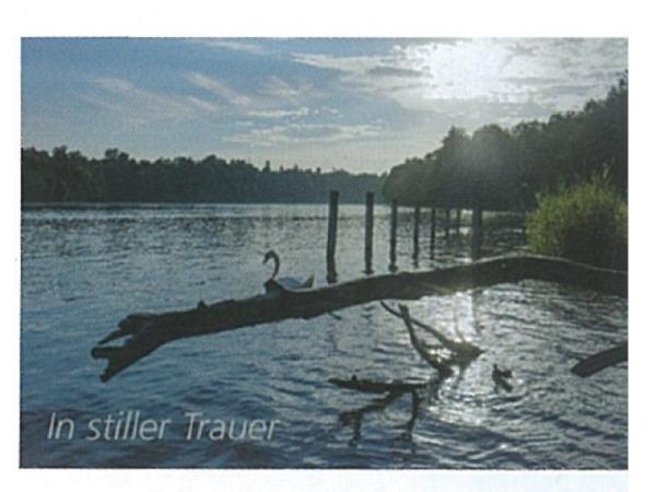 Trauerkarte Art Bula 12,2x17,5cm hängende Baumäste