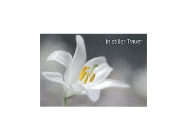 Trauerkarte Art Bula 12,2x17,5cm eine weisse Lilie, Doppelkarte mit Fotodruck, unbedrucktem Einlageblatt und Couvert