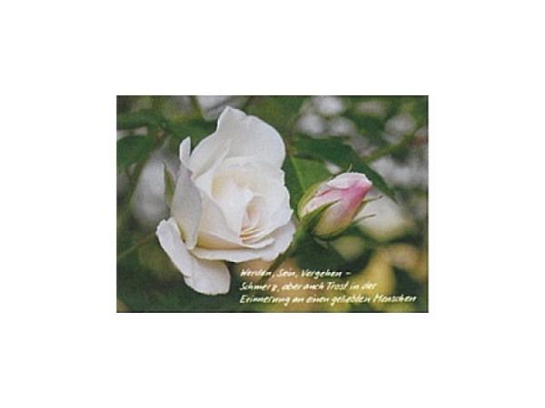 Trauerkarte Art Bula 12,2x17,5cm eine noch geschlossene und einer blühenden Rose, mit Text, Doppelkarte mit Fotodruck, unbedrucktem Einlageblatt und Couvert