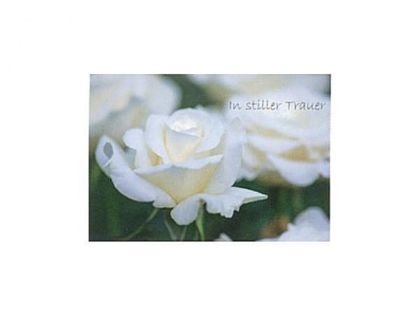 Trauerkarte Art Bula 12,2x17,5cm eine weisse Rose, Doppelkarte mit Fotodruck, unbedrucktem Einlageblatt und Couvert
