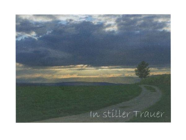 Trauerkarte Art Bula 12,2x17,5cm Baum auf einem Hügel, mit Text, Doppelkarte mit Fotodruck, unbedrucktem Einlageblatt und Couvert