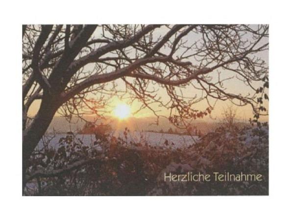 Trauerkarte Art Bula 12,2x17,5cm Baum ohne Blätter, mit Text, Doppelkarte mit Fotodruck, unbedrucktem Einlageblatt und Couvert